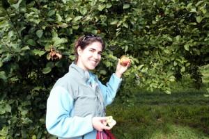 Fishkille Farms apple picking