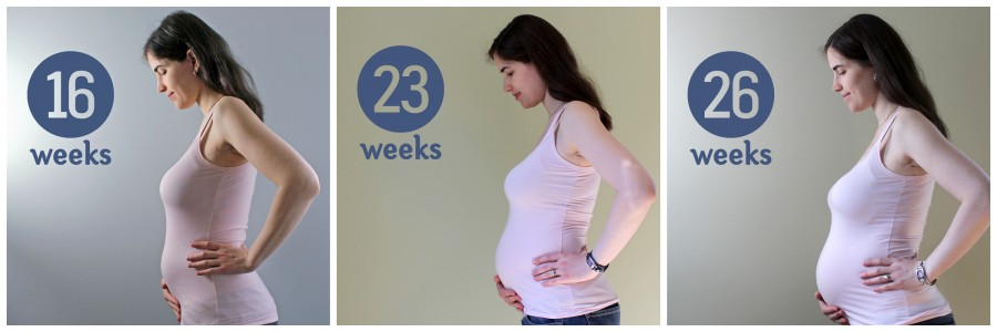 26 week collage ~ ElephantEats.com
