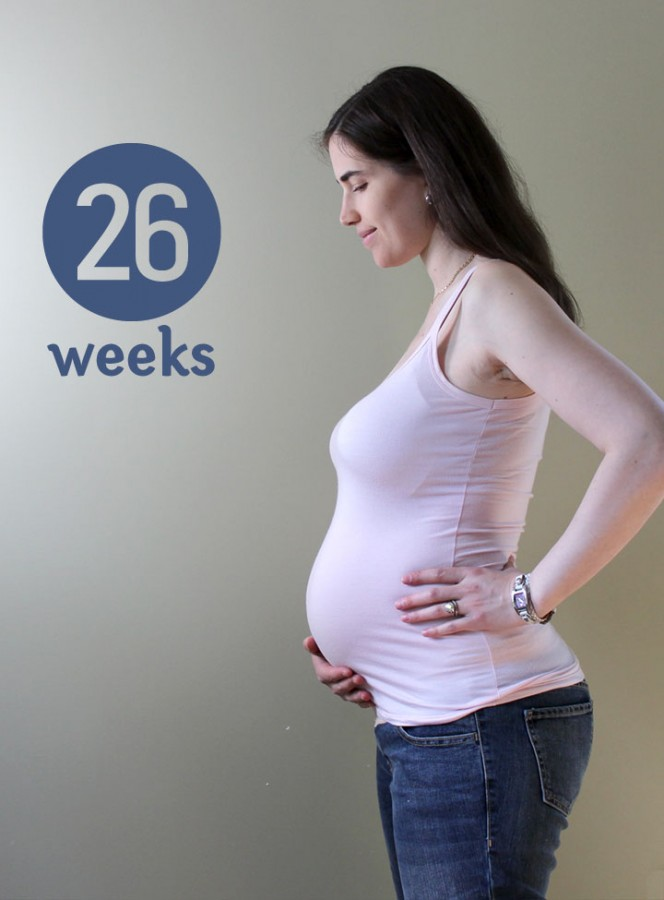26 weeks ~ ElephantEats.com