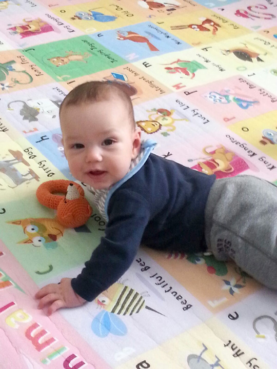 Berkeley on his playmat ~ ElephantEats.com