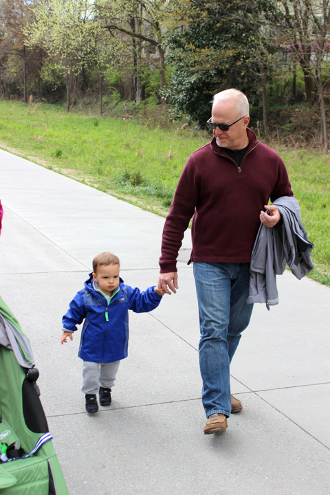 18 months walk with Grandpa ~ ElephantEats.com